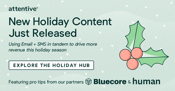 Attentive Holiday Hub