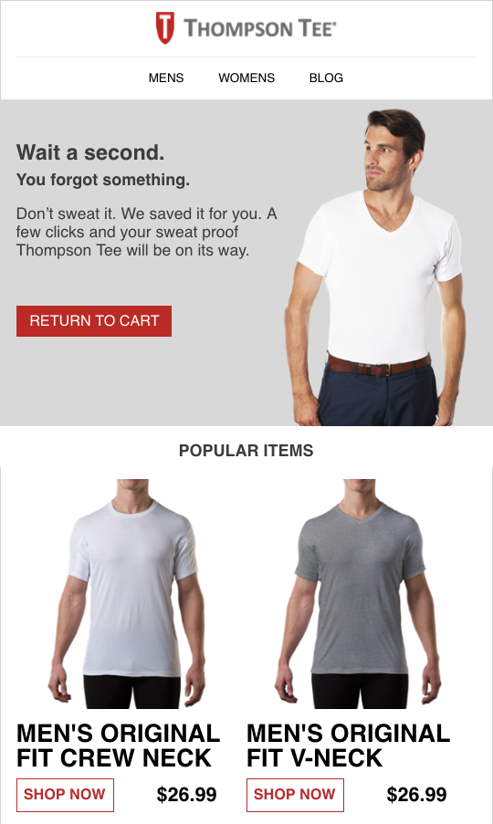 Thompson-Tee-Abandoned-Cart-Email-Example-2